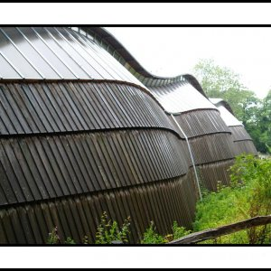 Downland Gridshell