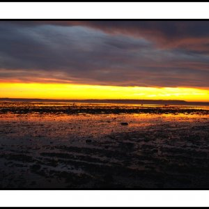 Whitstable Sunset 1